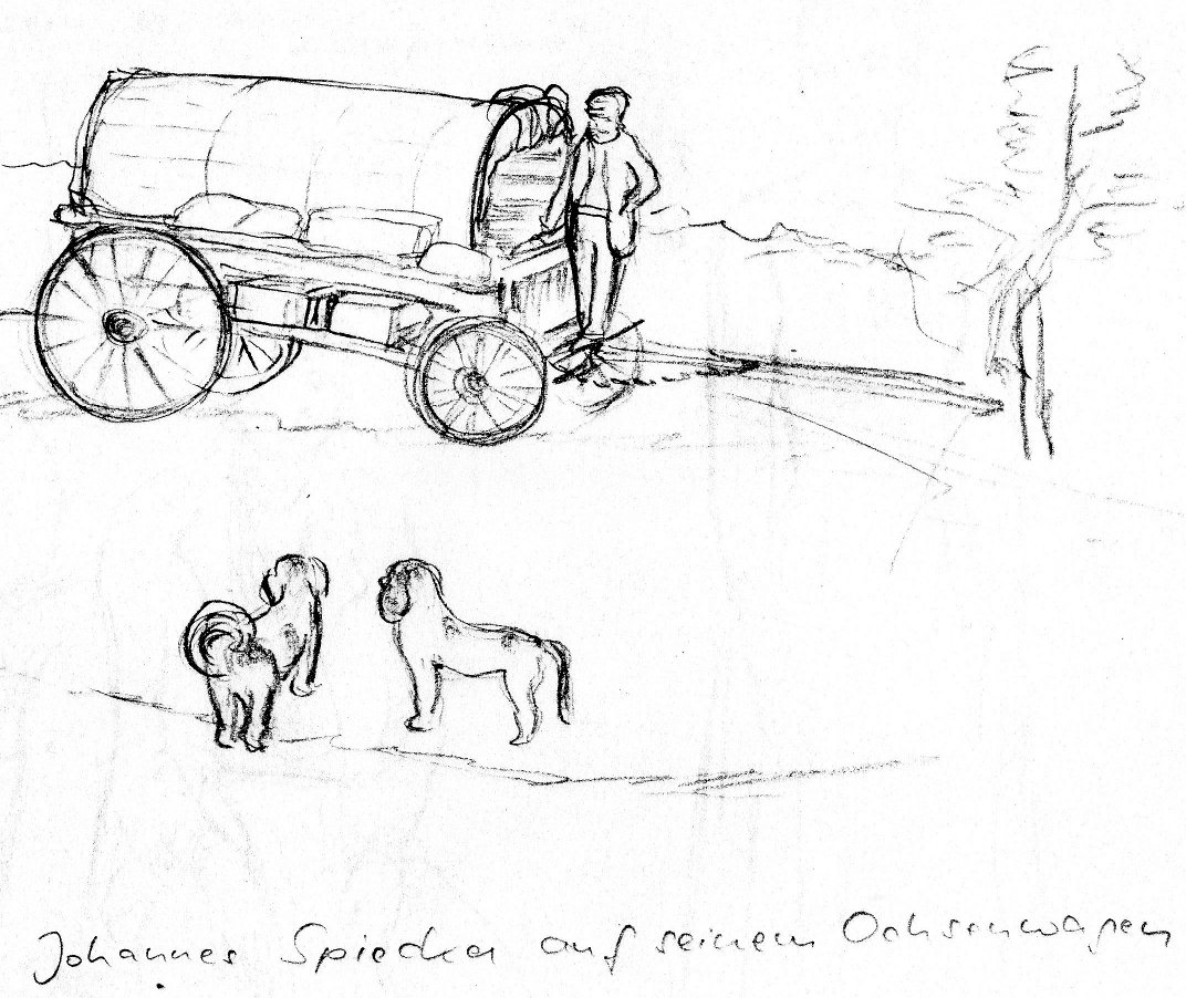 Spiecker on his ox cart